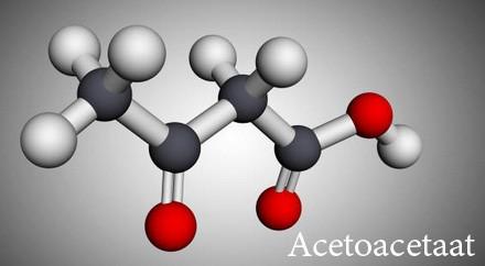 aceton ketose vs ketoacidose - keto voor beginners - nederland belgië